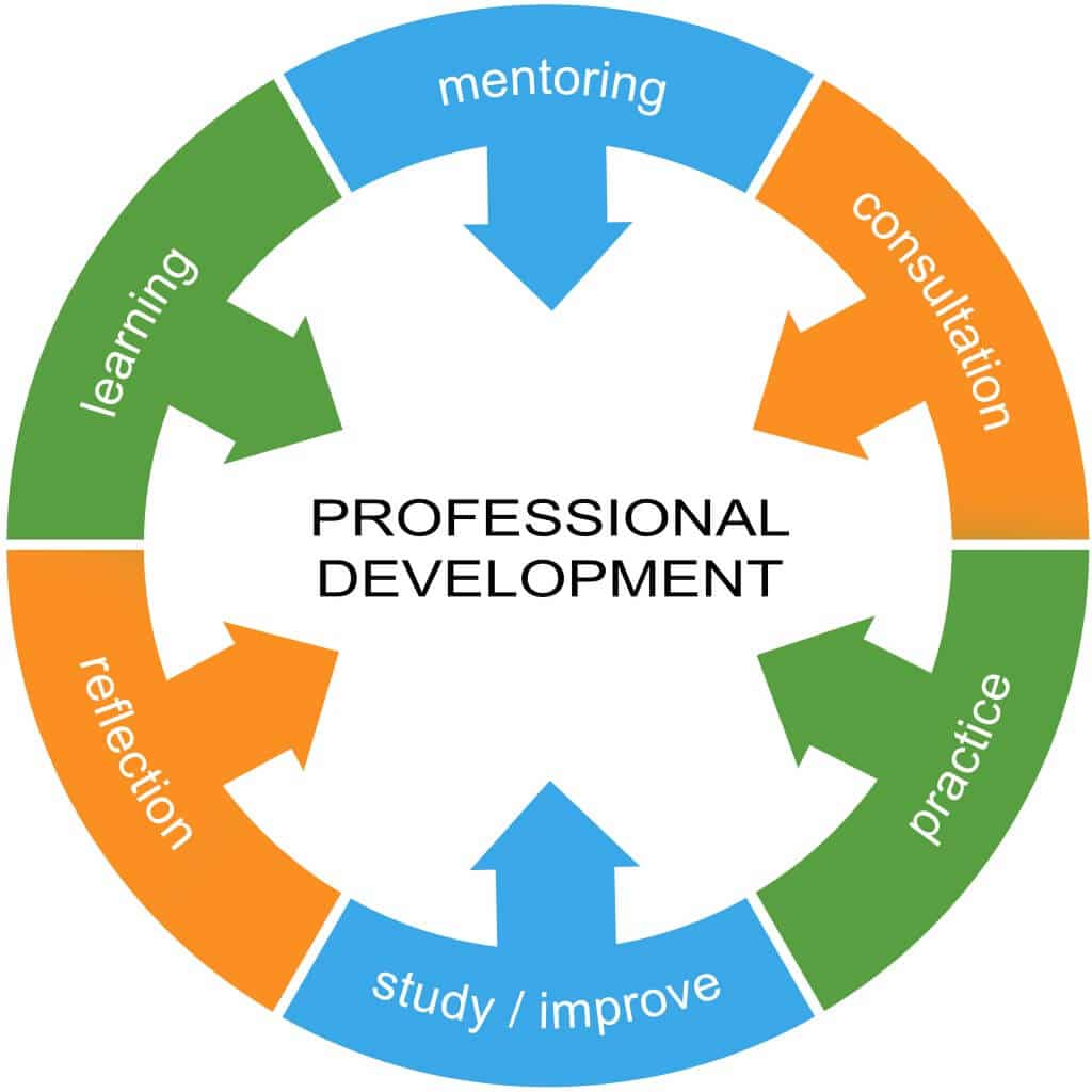 professional-development-chart-1024x1024